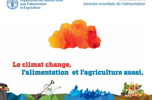 Article : Journée Mondiale de l'alimentation 2016 : le climat change, l'alimentation et l'agriculture aussi